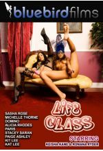 Download Life Class